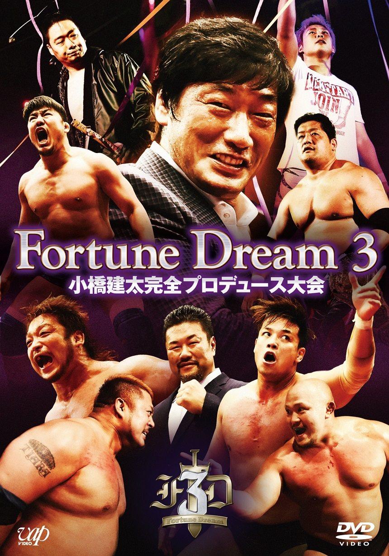 【プロレスリングZERO1】大谷晋二郎&佐藤耕平出場「Fortune Dream 3」DVD発売!