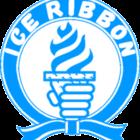 【アイスリボン】2.17『アイスリボン867』道場マッチ対戦カード決定!