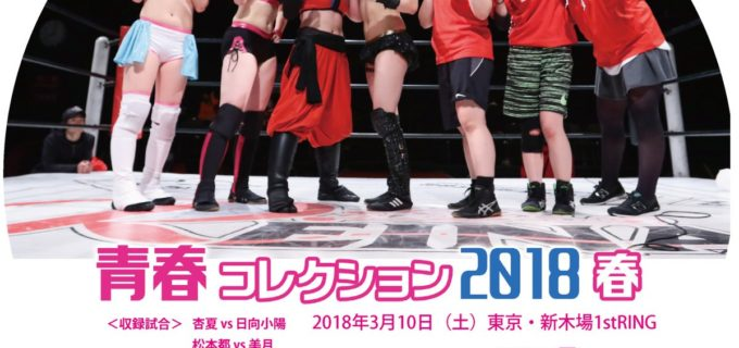 【REINA女子プロレス】活動休止前ラストマッチDVD発売開始!3/10新木場大会