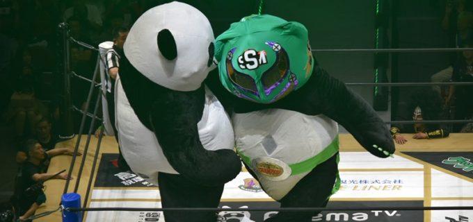 【DDT】大注目のスーパー・ササダンゴ・マシンvsアンドレザ・ジャイアントパンダの一戦にまさかのジャイアント・ササダンゴマシンが登場!2頭の巨獣対決もアンドレザが意地の勝利!!