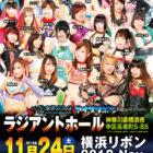 【アイスリボン】11.24(土)「横浜リボン2018・Nov.」で未定だった弓李のパートナーが決定!