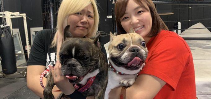 【SEAdLINNNG】世志琥&Sareee『鬼に金棒』の1stイベントが決定